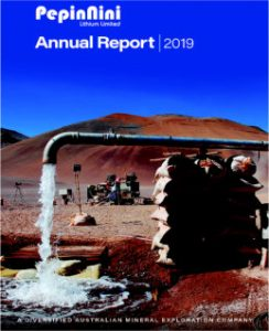 PepinNini Annual Report 2019